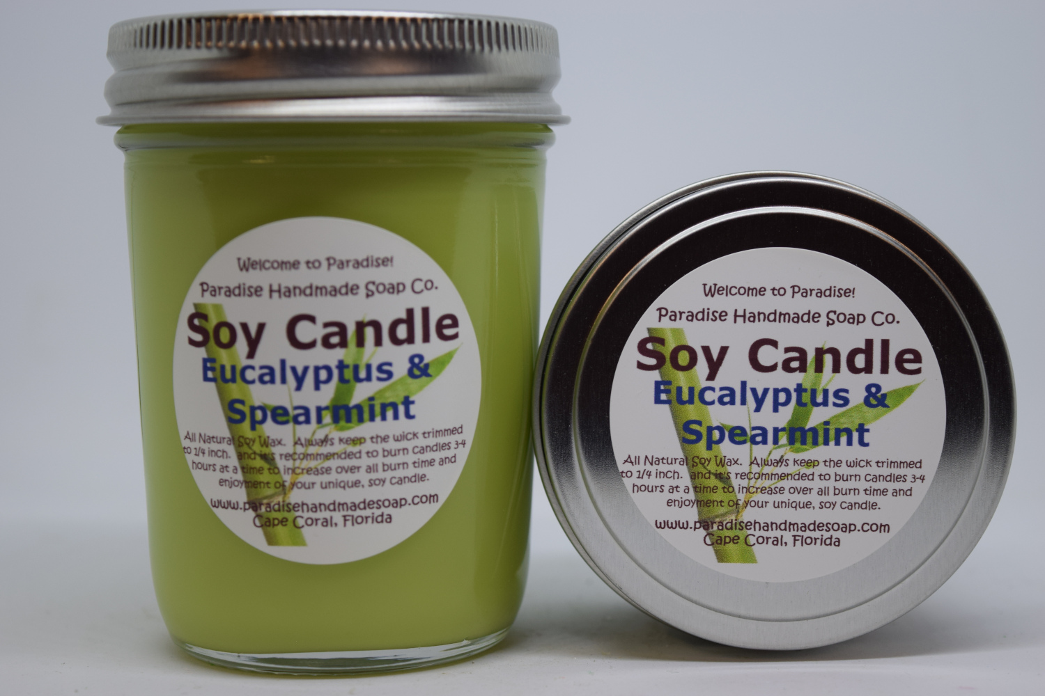 Eucalyptus Spearmint Candle